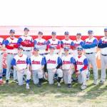 2015 Hungarian NBI/Division I